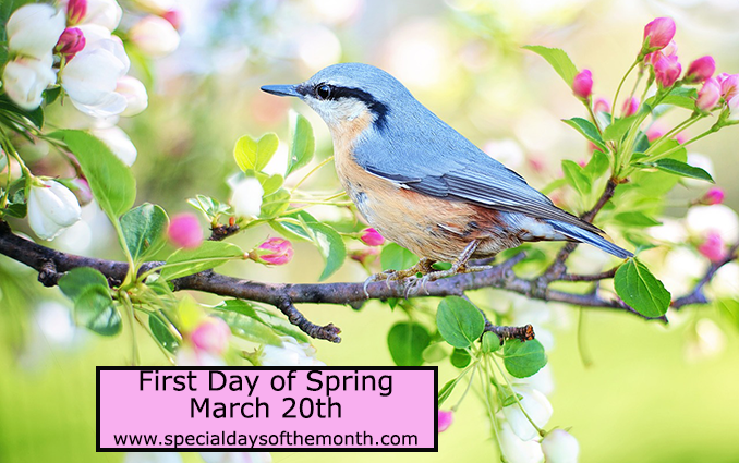 """spring equinox - march 20th"""