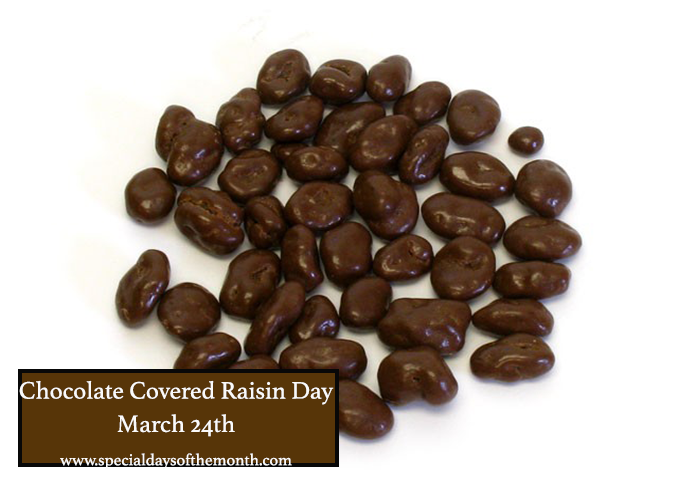 """raisinettes - chocolate covered raisins"""