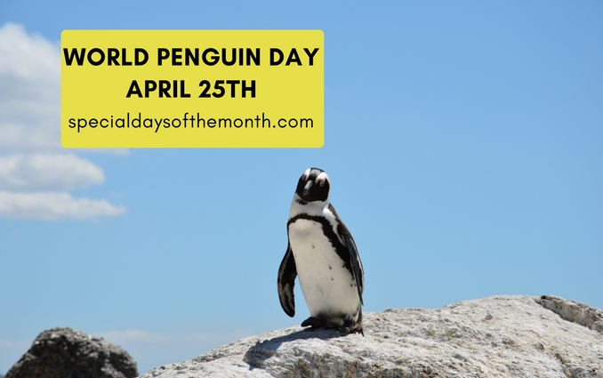"""""""penguin day - march 4th, 2018"""""""