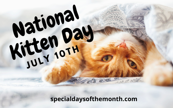 """national kitten day"""